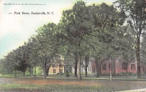 Sinclairville NY~Park Street Homes~Dirt Road~Summer Trees~AE Phillips Pub~1909