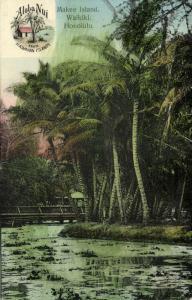 hawaii, HONOLULU, Waikiki, Makee Island (1910s) Aloha Nui