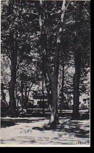 Pennsylvania Corry, City Park Dextre Press Archives