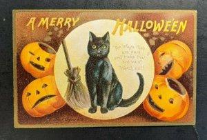 Mint Vintage Black Cats and Pumpkins Embossed Illustrated Halloween Postcard