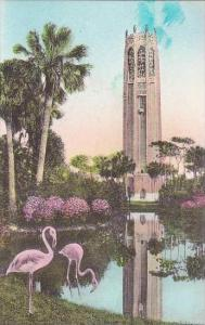 Florida Lake Wales The Singing Tower From The North Albertype