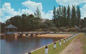 Singapore Pierce Reservoir