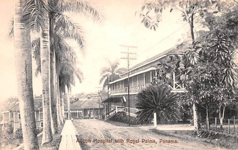 Panama Old Vintage Antique Post Card Ancon Hospital with Royal Palms Unused