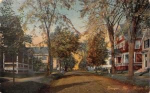Bangor Maine~Maple Street Scene~Houses~Autumn Trees~c1910 Postcard