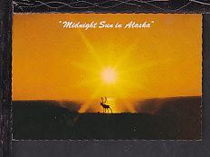 Midnight Sun in Alaska Postcard BIN