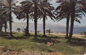 Kibutz ein Gev , Israel , PU-1961 Sea of Galilee