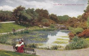 Illinois Chicago Lily Pond In Lincoln Park