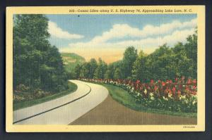 Lake Lure,No Carolina/NC Postcard,Canna Lillies/Highway 74