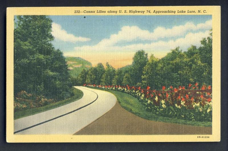 Lake Lure,No Carolina/NC Postcard,Canna Lillies/Highway 74