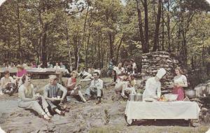 Picnic at Pocono Gardens Lodge - Cresco PA, Pennsylvania