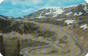 Colorado Timberline On Loveland Pass