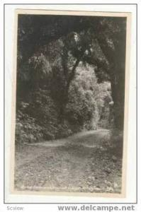 RP Road to Dawson Fall House, New Zealand 20-40s