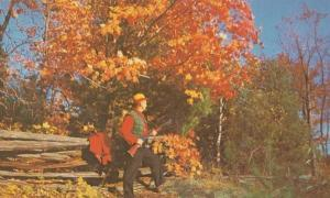 Mousse Hunting Hunt James Street Forest Kodak Orillia Gun Rifle Canada Postcard