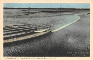 B5121 The Tidal of the Petitcodiac River Moncton N B