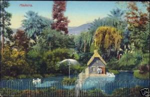 portugal, MADEIRA, Gardens, Pond with House (1910s)