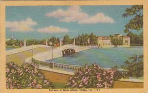 Florida Tampa Entrance To Davis Islands1947