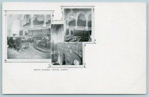 Albany NY~Art Nouveau~Senate Chamber~Gallery, Entrance & Floor PMC c1900 B&W