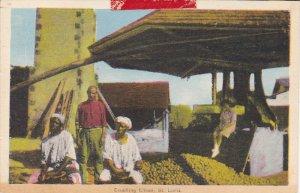 6 SAINT LUCIA Postcards 20-40s