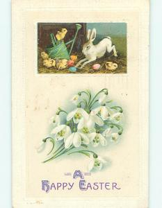Divided-Back easter rabbit BUNNY & CHICK ON WATERING CAN r3363