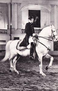 Wien Spanische Reitschule Tropp Spanish Riding School Austria Postcard