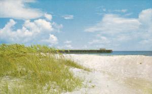 Sea Oats & Pier , Myrtle Beach State Park , South Carolina , 40-60s
