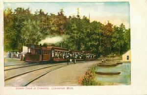 Railroad, MI, Ludington, Michigan, Dummy Train at Epworth, E.C. Kropp