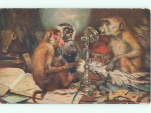 Pre-Linen MONKEYS USING ANTIQUE TELEPHONE AC5819