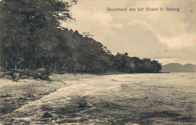 Indonesia Bos aan het Strand te Sabang 03.05