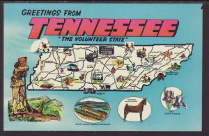 Greetings From Tennessee,Map Postcard