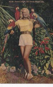 Florida Miami Beautiful Girl With Macaws Parrot Jungle Red Road