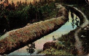 Washington Spokane An Irrigation Ditch 1910