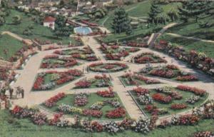 California Oakland Rose Gardens