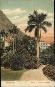 Hongkong Hong Kong China Palm Botanical Garden c1905 Postcard