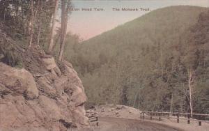 Indian Head Turn The Mohawk Trail Massachusetts Handcolored Albertype