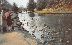 Forest Park Springfield, Massachusetts