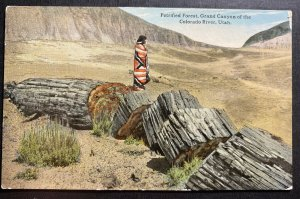 Mint USA Picture Postcard Native American Petrified Forest Grand Canyon Colorado