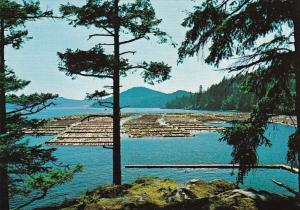 Canada Vancouver Island Log Booming Grounds