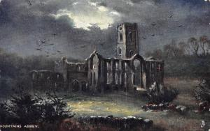 Fountains Abbey Ruins Night view Birds 1904