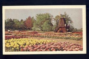 Holland, Michigan/MI Postcard, Tulip Time, Windmill