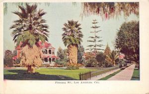 Los Angeles California~Figuroa Street~Beautiful House w Gardens & Palms~c1905 Pc