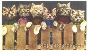 Cats Unused