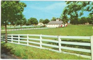 Picturesque Horse Farm in the heart of the Bluegrass Region, Lexington, Kentucky