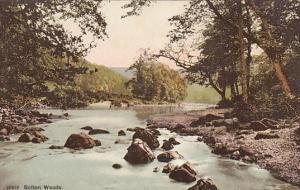 ENGLAND, 1900-1910's; Bolton Woods, River
