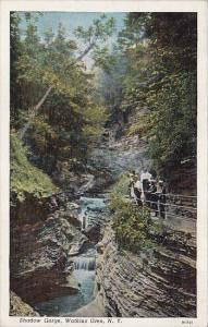 New York Watkins Glen Shadow Gorge 1941