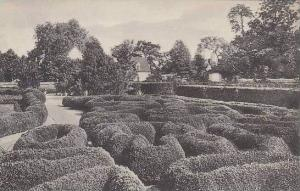 Virginia Mount Vernon Flower Garden And Boxwood Bordered Rose Beds Home Of Ge...