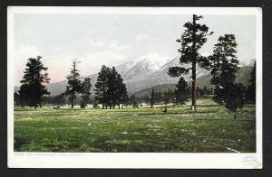 Distant View San Francisco Mts from Arizona Unused c1910s