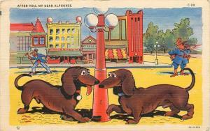 1942 AFTER YOU, MY DEAR ALPHONSE. two dachshunds DOGS POSTCARD