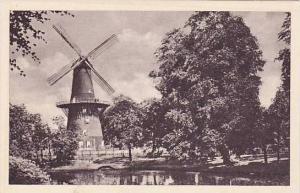 Windmill : Hollandse Molenserie , Netherlands, 20-40s #8