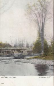 DURHAM , Ontario , Canada ,  1900-10s ;  On The Saugeen, Bridge