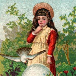 1870s 1880s Girl Doves Egg German Sweet Music Dealer Perry New York Trade Card